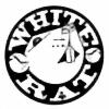 miguelpizzo's avatar