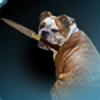 MimeLewis's avatar