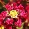 Mimicy's avatar