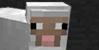 Minecraft's avatar