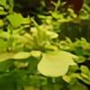 minicow3's avatar