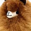 mintcoconut's avatar