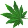 mintgloria's avatar