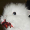 Minutia5's avatar