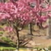 Miracle2074's avatar