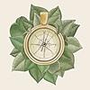 Mirhayasu's avatar