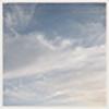 MirrorsxShadow's avatar
