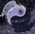 Misfitlegacy13's avatar