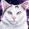 Miss-Blurry's avatar