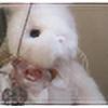 MisterCarbon's avatar