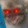 MisterGoany's avatar