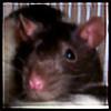 mistressobscene's avatar