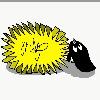 MiyaweDaPlayer's avatar