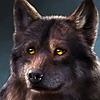 mjnorenac's avatar
