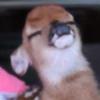 MLG-History908's avatar