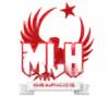 mlhgraphics's avatar