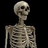MMDemon's avatar