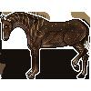 Mocarro's avatar