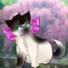 Moiara's avatar