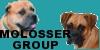 molossergroup's avatar