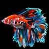 Momoka2Usagi's avatar