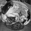 mona-moo's avatar