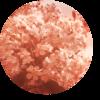 Monstrocker's avatar