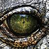 MonstrousMultiverse's avatar