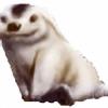 moofiak's avatar