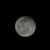 Moon568's avatar