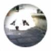 Moonacre123's avatar