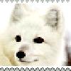 Moonfur1717's avatar