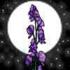 MoonlitAconites's avatar