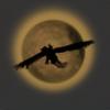 Moonlyte's avatar