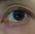 morshuzz's avatar