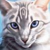 mothmori's avatar