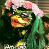 Mothsou's avatar