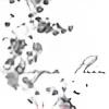 MoynaPhin's avatar