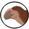 Mr-Placo's avatar