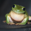 MrEndersnow's avatar