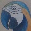 MrPickle133's avatar