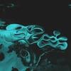 mrtnz3's avatar