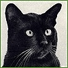 MsXeno's avatar