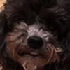 mtr7033's avatar