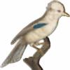 MUeX700's avatar