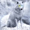 MurderingCrow's avatar