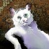 murkq's avatar