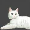 mushkim's avatar