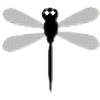 mutantbutterfly33's avatar