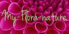 My-Flora-Group